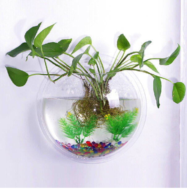 Awesome Living Bubble Fish Tank Gallery - Best idea home design ...
