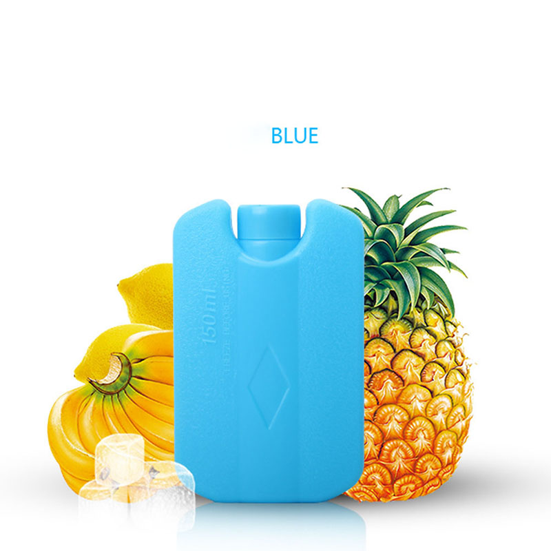 Convenient Easy Carry Mini Ice Brick Freezer Tool Outdoor Travel Lunch Bag Box Cooler Cool Pack JY