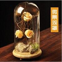 כיסוי הזכוכית החדשה נוף מיקרו זכוכית המאפיינים של פריטי ריהוט מתנות יצירתי diy