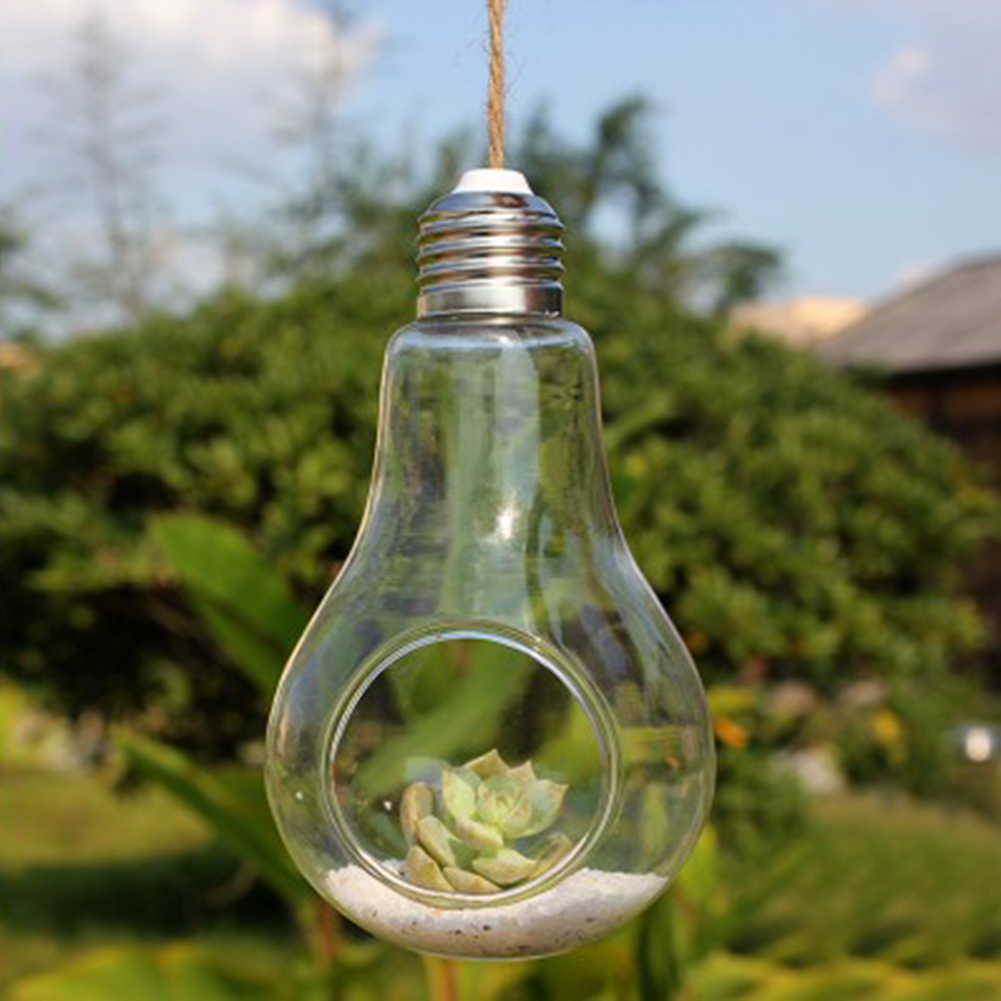New Glass Bulb Lamp Shape Flower Water Plant Hanging Vase