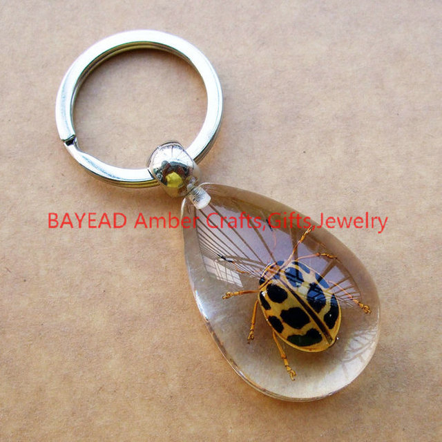 Real Beetle Bug Keychains Drop Shape M Size Insect Amber Resin Keychain Bug  Keyring Free Shipping e3dad57e56d3