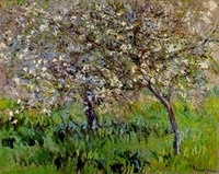 High quality Oil painting Canvas Reproductions Apple Trees in Bloom at Giverny (1900 1901) By Claude Monet hand painted