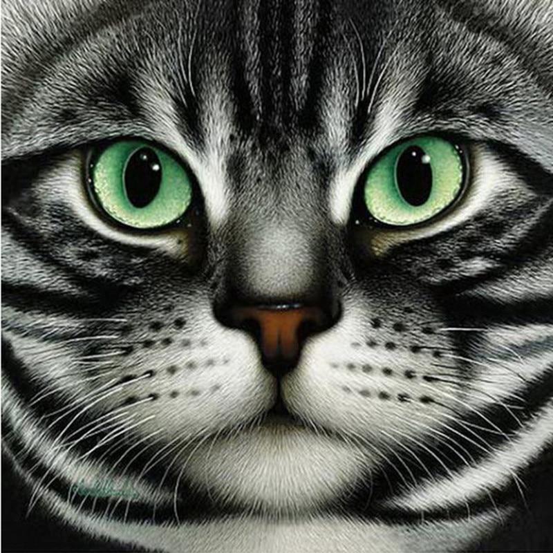 Diy 5D Berlian Lukisan Cross Stitch Tinggal Di Grey Cat Berlian - Seni, kerajinan dan menjahit - Foto 1