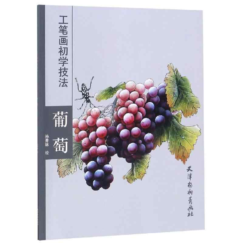 46 Sayfa Ogrenme Cin Firca Boyama Kitabi Gongbi Gong Iki Uzum