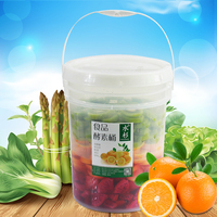 20L translucent fast fermentation barrel Food Grade fermenter container Home made enzyme wine bucket with lid Hot sell