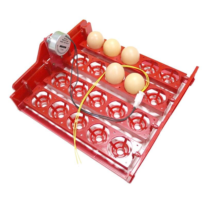 20 Yumurta İnkubatoru Yumurta Tepsisini Eggtester Avtomatik olaraq - Ev heyvanları və zoo məhsullar - Fotoqrafiya 3