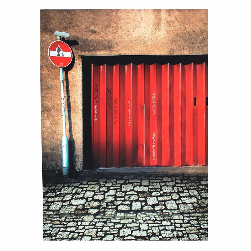 Retro Red Iron Gate Photography Background Wall Floor Photographic Backdrops For Studio Photo Props 2.1m x 1.5m Cloth