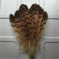 Perfekte 10 hochwertige natürliche 12-15 zoll/30-40 cm eule federn, dekorative accessoires, hüte,, der fans, etc.
