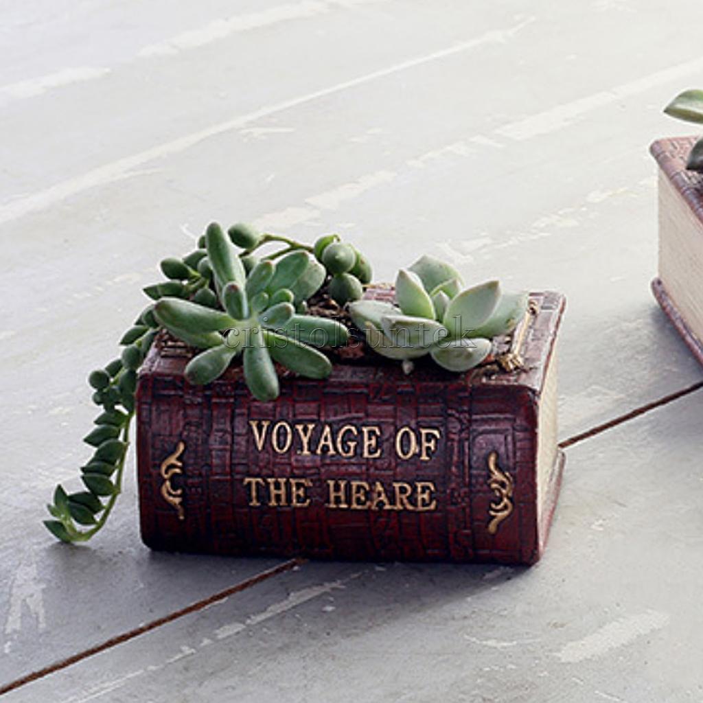 Книги про кактусы скачать бесплатно