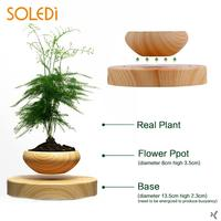 Plastic Creative Magnetic Bonsai Plant Box Flowerpot Office Gifts