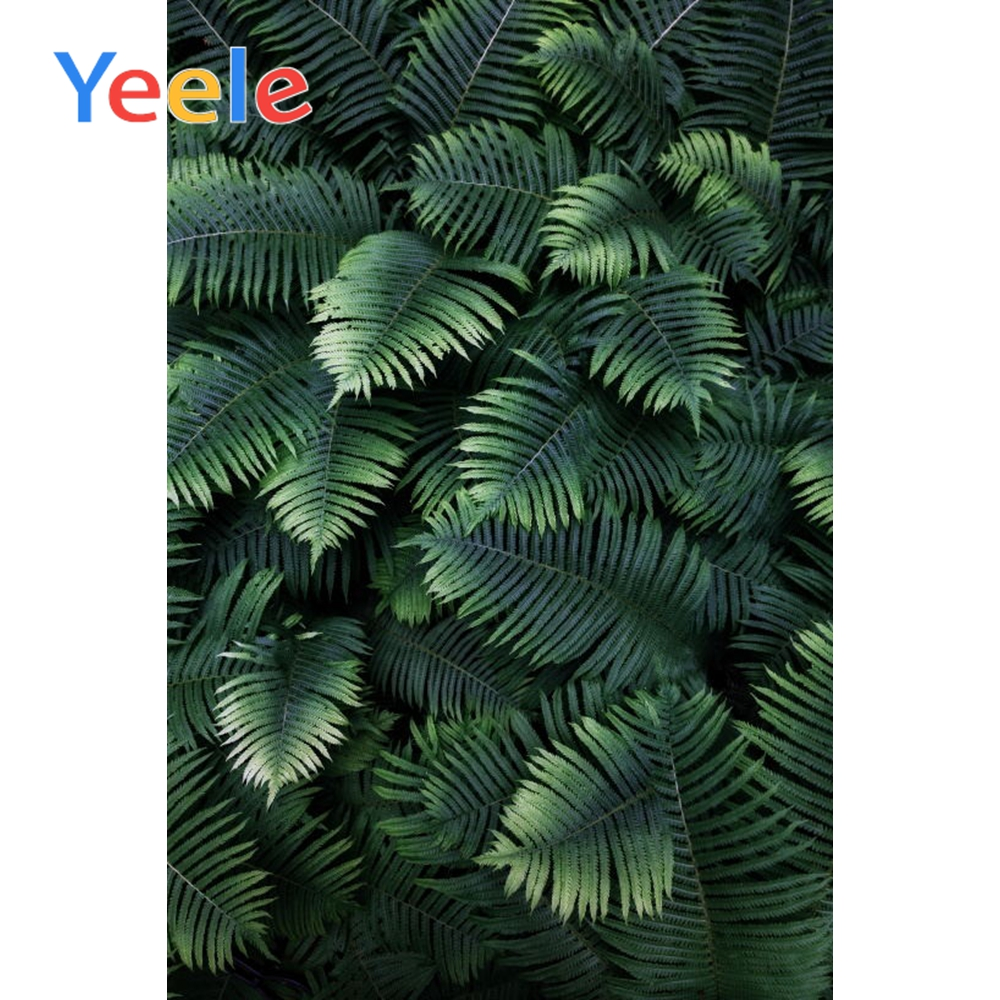 Yeele Tropical Palm Tree Leaves Birthday Woodland Party Portrait Photo Backgrounds Photography Backdrops For The Photo Studio