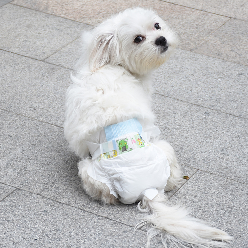 disposable female dog diapers DY579-8