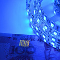 New UV black light Led Strip 3528 SMD 60led/m DC12V Purple 395-405nm Ultraviolet Ray Led Flexible Tape rope Ribbon lighting