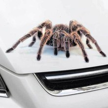Spider Car Stickers And Decal Animals Vivid Scorpion Lizard Funny Stickers On Auto Stripe DIY Car Styling Sticker Accessories(China)