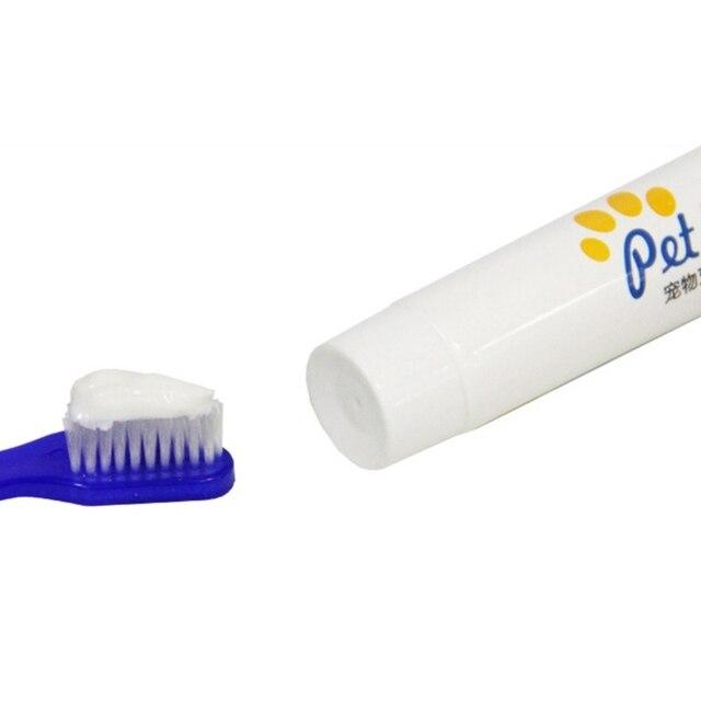Photo : Dentifrice pour chien en action