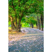 Laeacco Spring Golden Sunlight Forest Flowers Road Scenic Photography Backdrops Backdrop Custom Backgrounds For Photo Studio цена