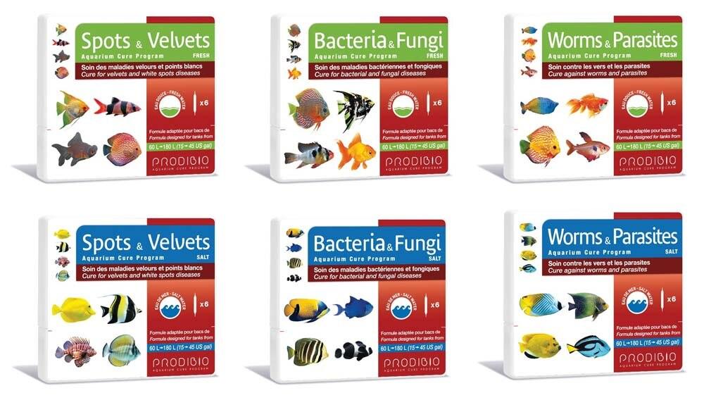 bacterias parasitos y hongos