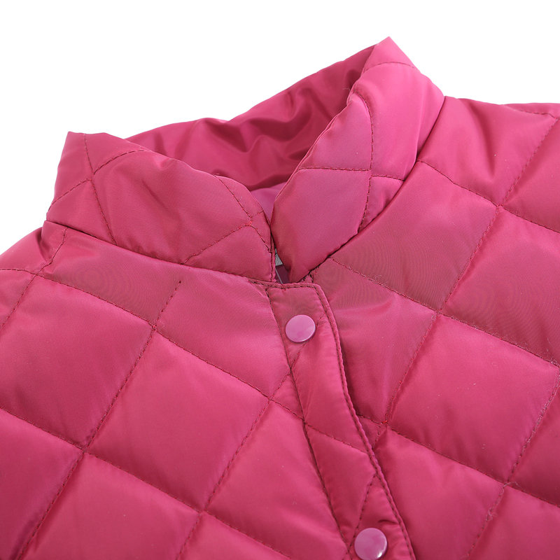 Woman Puffer Shoulder Padded Vest Winter Autumn Women Quilted Shoulder Pad Waistcoats Female Stand Collar Wadded Weskit Womens Belero Vest (18)