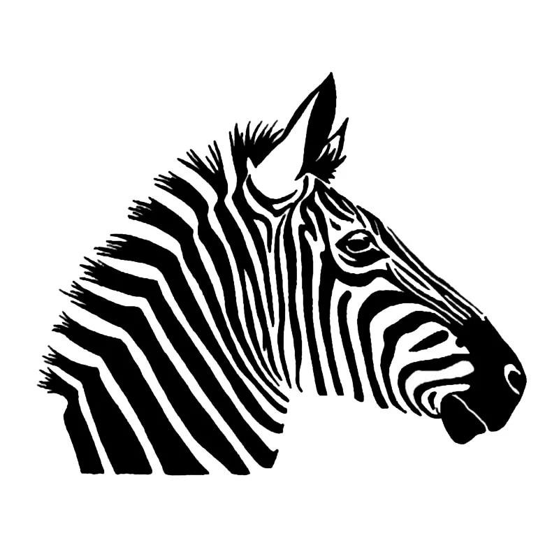 13 cm x 7,8 cm Zebramuster Autoaufkleber Aufkleber 3D-Aufkleber f/ür Auto Ganzk/örper Auto Wrap Zubeh/ör