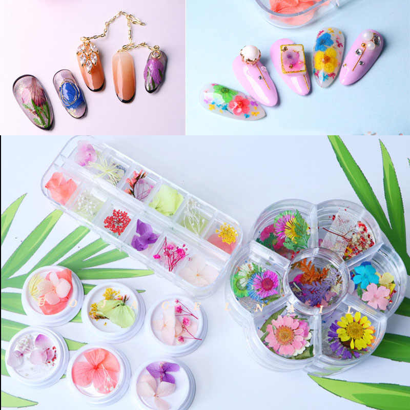 Mix Dried Flower For Nail Decoration Jewelry Natural Floral Leaf Stickers 3D Nail Art Designs Gypsophila Manicure Accessories