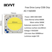 1/Psc High Voltage Free Drive Lamp COB Chip 30W 40W 50W Input Smart IC 220V Floodlight Integrated light source