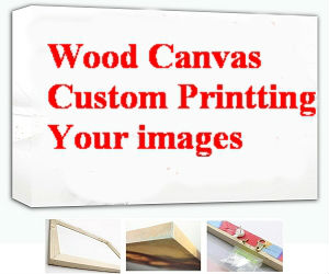 your photo customize custom wood art wall canvas frame abstract landscape combine art pictue 36x24