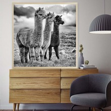 Fashion Black and White Llama Poster Animal Canvas Painting Alpaca Posters and Prints Wall Art Picture For Living Room Decor