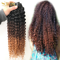 9A Malaysian Virgin Hair 3pcs/lot Ombre Hair Afro kinky curly Hair Extensions Brazilian Afro kinky curly Hair 3 Bundles 1b/4/30