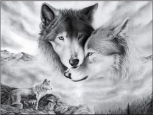 5D Diy Square Diamond painting Wolves cross-stitch kits for embroidery with diamond paintings Wolf
