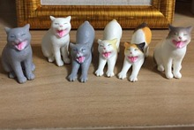 pvc figure pvc cute cats 6pcs/set