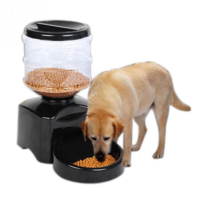 automatic pet feeder programmable timer food station dispenser