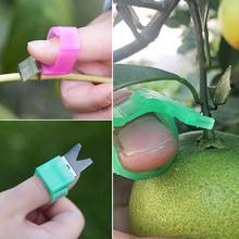 1 sztuk narzędzia ogrodnicze przycinanie nożyce pomidor ogórek winogron owoce zbieranie narzędzia ogrodnicze ostrze nożyce do cięcia pierścienie tanie tanio Uniwersalny frezy Obwodnica Z tworzywa sztucznego Nie powlekany Antypoślizgowy uchwyt YP182755 Liplasting Cutter