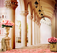 Thin Vinyl Photography Backdrop 5x7 Palace Archway For Wedding Photo Shoots Real Professional Camera Photo Studio Background