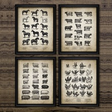 Vintage Farm Animals Poster Print Chicken Pig Sheep and Hors