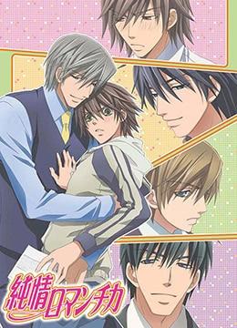 《纯情罗曼史》2008年日本动画,爱情动漫在线观看