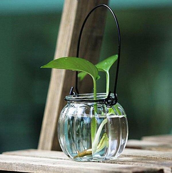 Aliexpress Buy Zakka Pumpkin Sharp Glass Flower Vase Water