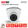 Full HD IP Camera POE 2MP 1080P onvif 24IR indoor Vandalproof room Dome Ambarella P2P Night Vision video camaras de vigilancia