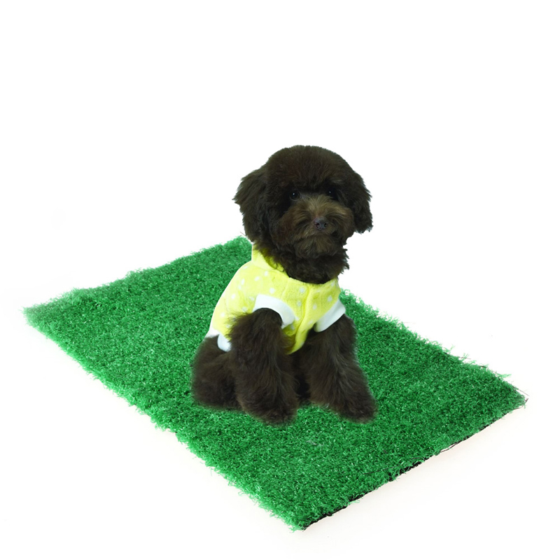 Indoor Dog Potty Grass Reviews