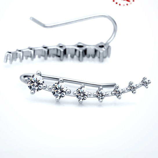 Absolut forbløffende AAA Cubic Zirconia sølv ørejakke Kvinder - Smykker - Foto 6