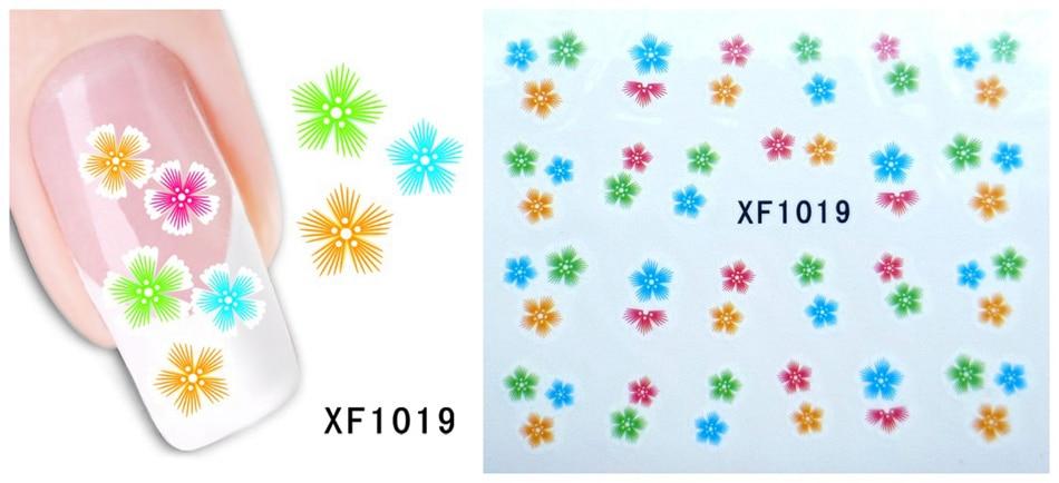 XF1019 -