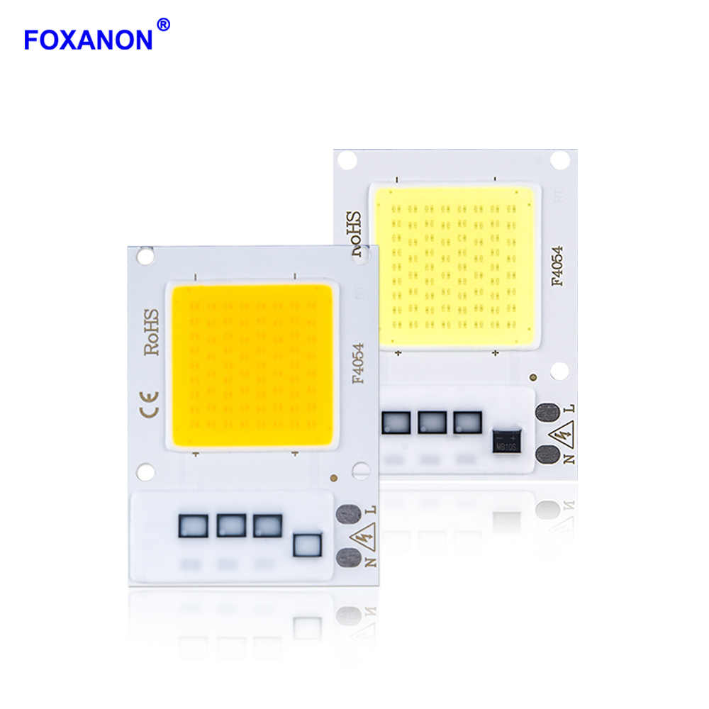 Foxanon COB Chip LED Lamp Bulb AC110V 220V 10W 20W 30W Smart IC LED Lights Matrix Diode Array Spotlight For Downlight Floodlight