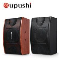 Oupushi Home Theater 100W Karaoke Speaker 2 Way Full Range Echo Professional Club 10 Inch Power Speaker For Outdoor Event