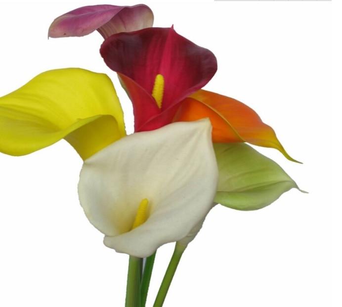 뜨거운 판매 디스플레이 꽃 진짜 터치 PU 소재 가정 - 휴일 파티 용품 - 사진 3