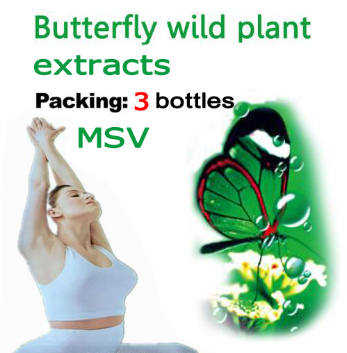 (3 Bottles) 108 Days Supply Diet Product Butterfly Wild Plant Botanic Extracts Gels Fat Burner Strong MSV TOPS