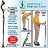Adjustable pole foldable safety wa