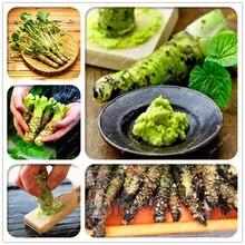 купить 100 Pcs Wasabi Bonsai Plants Rare Japanese Horseradish Mustard Vegetables Wasabia Japonica Potted Planting for DIY Home Garden дешево