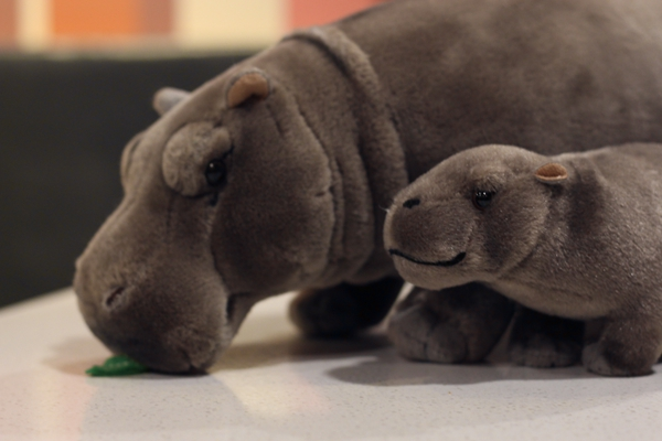 12 hipopotamos eretos realistas brinquedos animais de 02