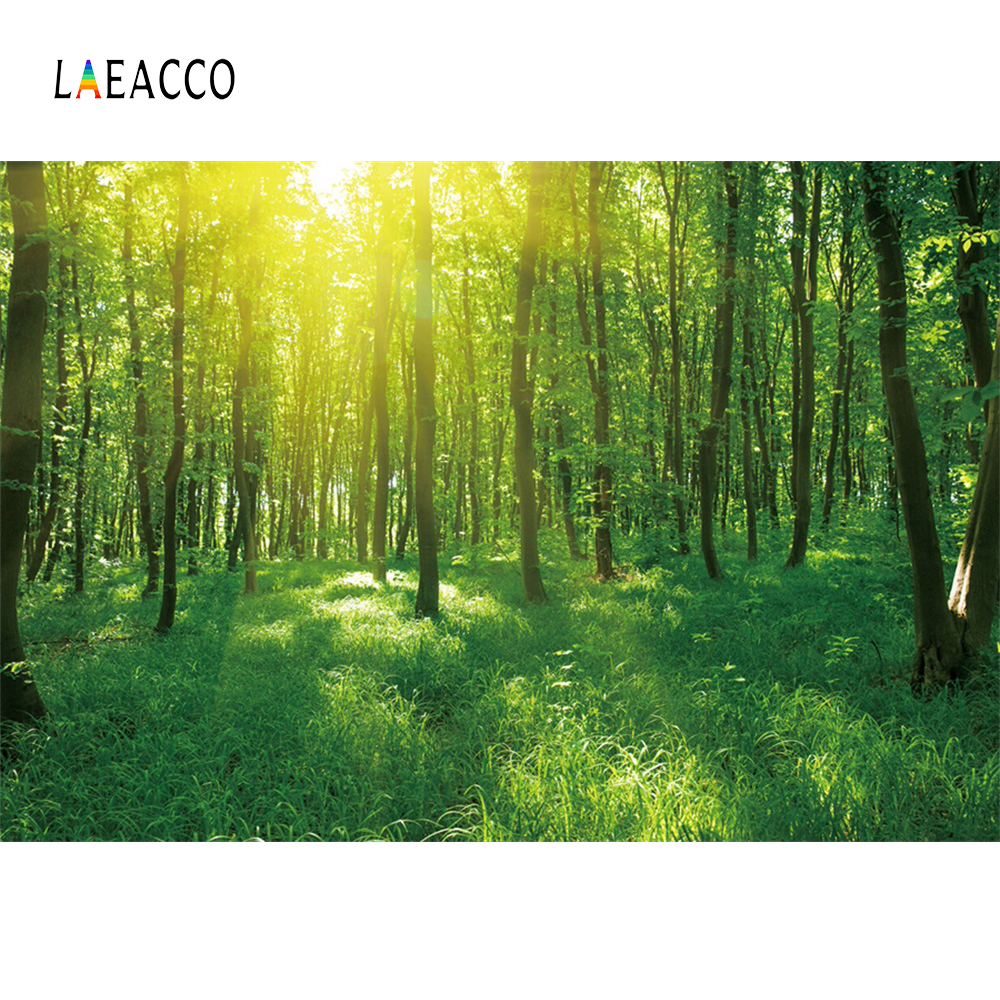 Laeacco Spring Grass Forest Trees Sunshine Scenic Photographic Backgrounds Customized Photography Backdrops For Photo Studio