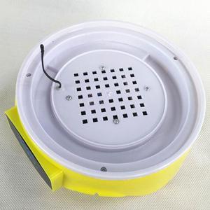 Image 5 - 220V Mini 7 uova rotazione automatica incubatrice per pollame controllo digitale della temperatura Hatcher pollo anatra uccello Hatcher