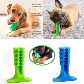 bristly-brushing-stick-worlds-most-effective-toothbrush-for-dogs-pets-oralcare